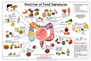 Doctrine-of-Food-Signatures